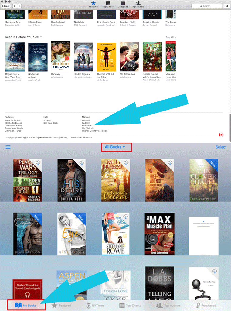 Downloading iBooks to your PC directly from iTunes
