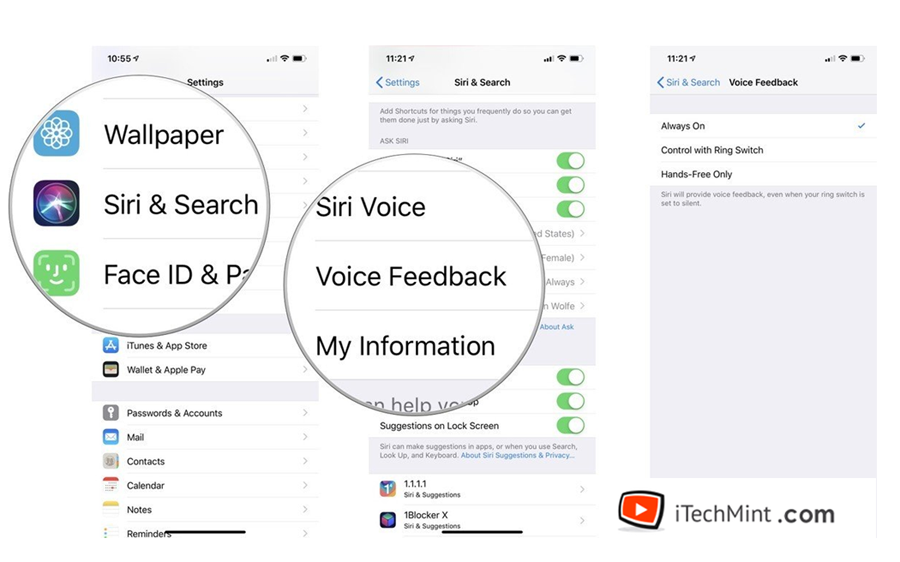 Modify Siri Voice Feedback