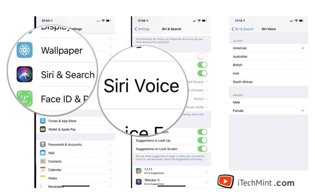 Steps to change the voice of Siri
