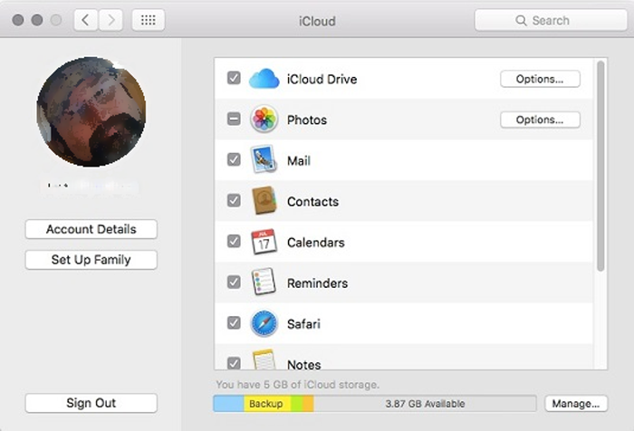 Find your iCloud usage in the System Preferences on a Mac.